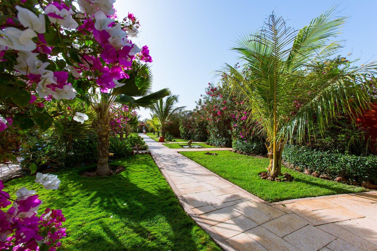 zahrada-hotel-afrika